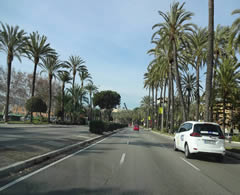 driving along port palma